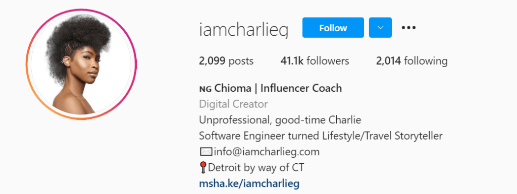 An example of a good Instagram influencer bio
